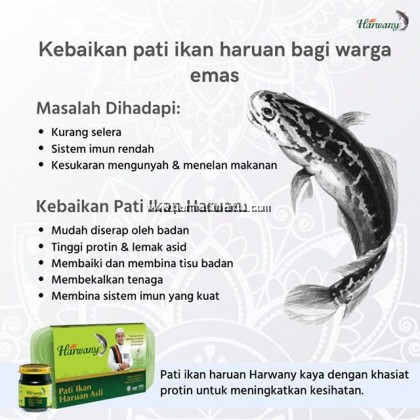 Harwany Pati Ikan Haruan Asli